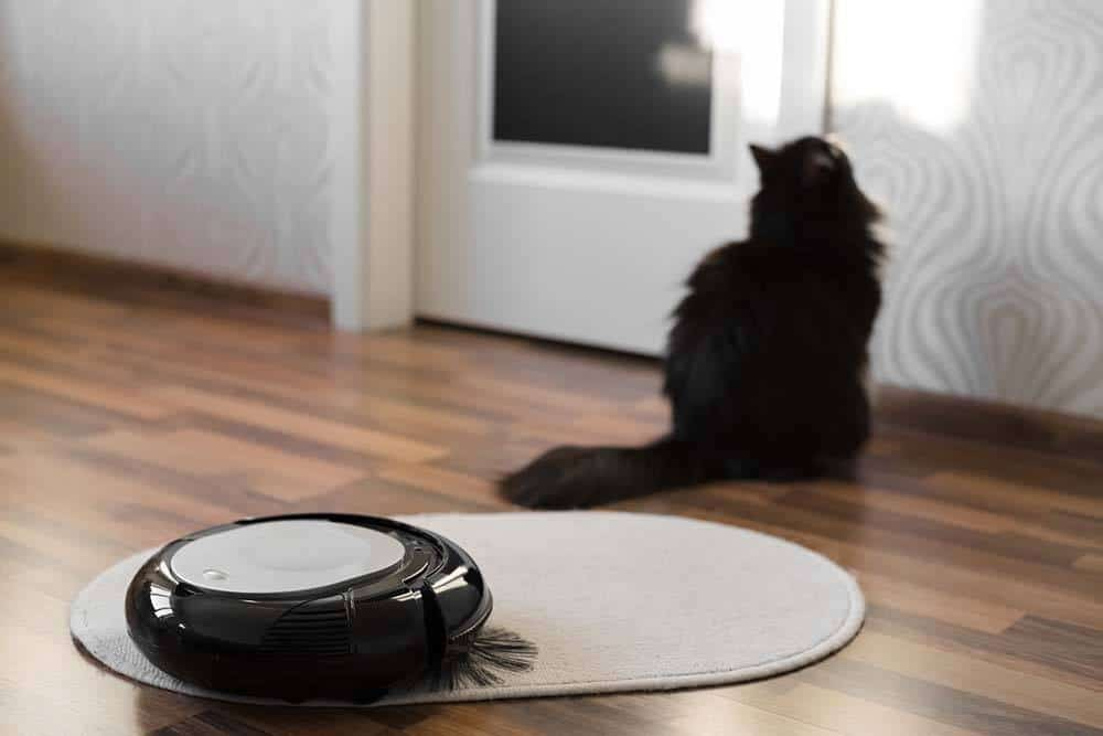 The Best Vacuum For Pet Hair Under 100