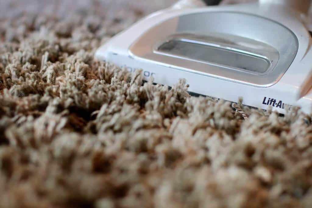 Best Vacuum For Thick High Pile Shag Amp Plush Carpet