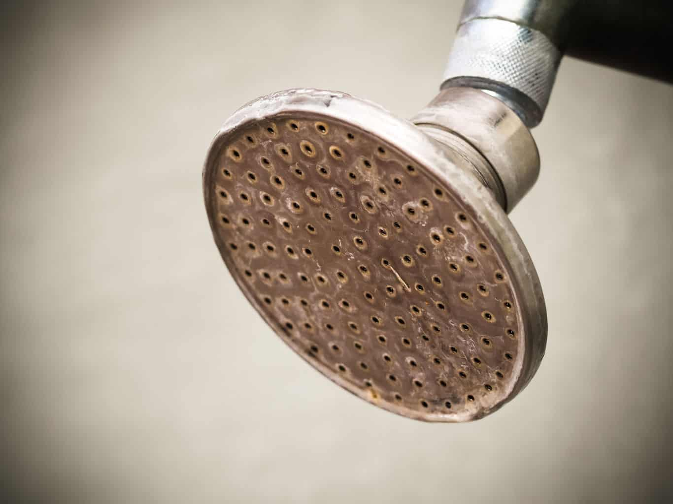 Old and rusty silver shower head