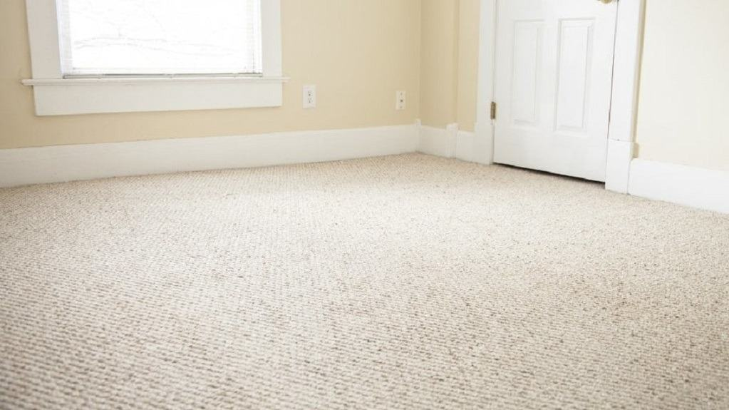 Clean carpet in an empty room
