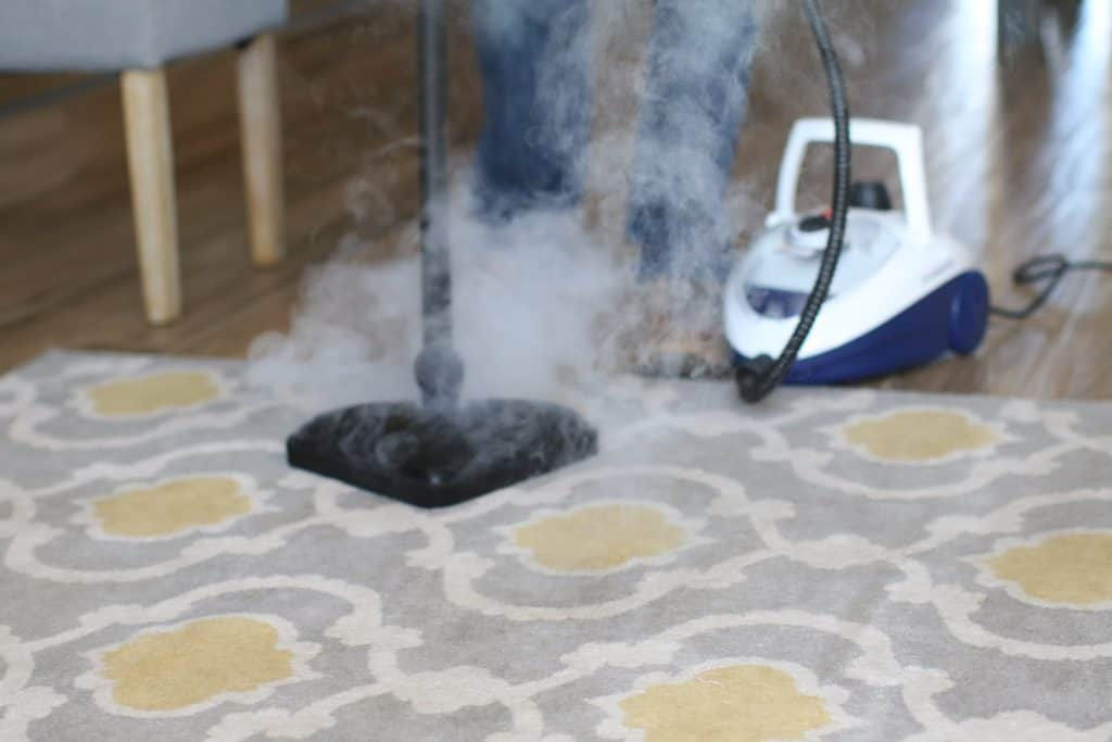 Commercial steam cleaner cleaning a carpet