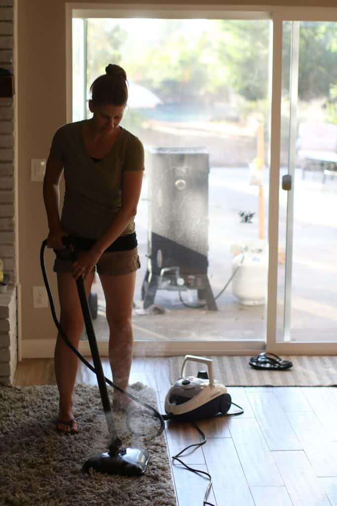 Woman using a steam cleaner to clean her wool rug